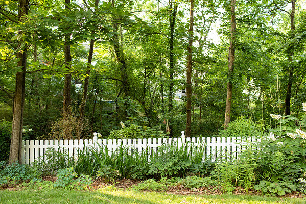 Backyard picket fence #gardening #picketfence