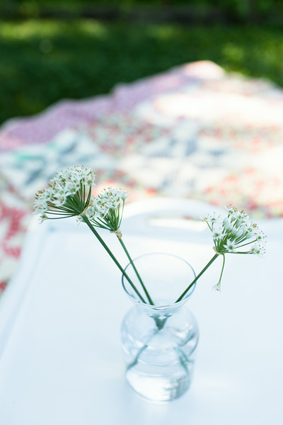 Garlic Chives | Sidewalk Shoes