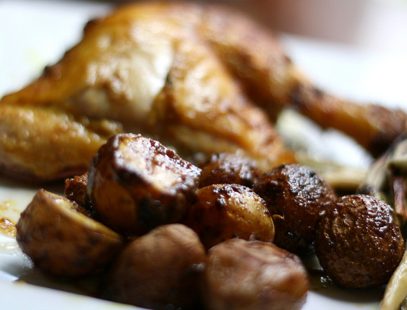 Curry roasted chicken and potatoes