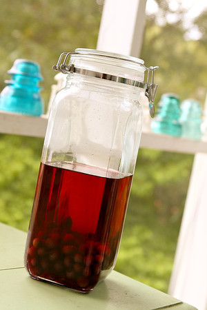 Blueberry infused vodka