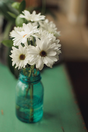 Daisies in ball jar