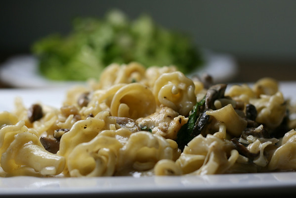 Farfalle with Creamy Wild Mushroom Sauce