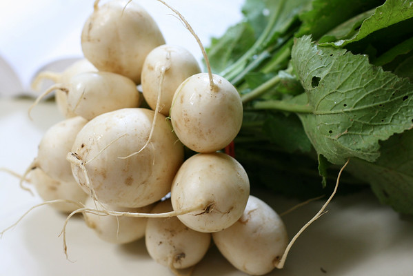 Turnips looking deceitfully pretty