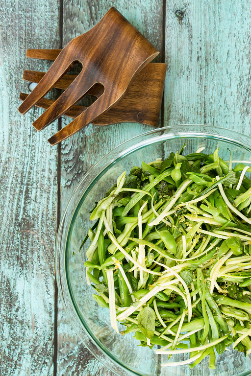 Fresh zucchini, lightly steamed green beans, hot chile peppers, and fresh mint and basil all combine with a tasty lemon honey dressing in this Zucchini, Green Bean and Chile Slaw