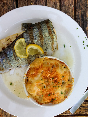 Steve Pickett's Trout and Mac and Cheese from 1885 Grill