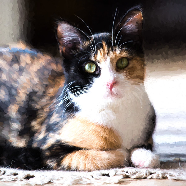 Calico cat in the style of Cézanne