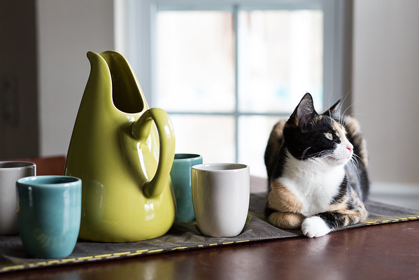 Luxie Kitty and her Russel Wright Pottery